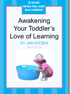 Awakening Your Toddler's Love of Learning (ebook)